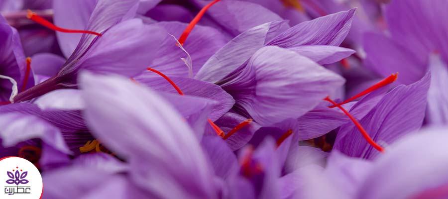 مربای گل زعفران