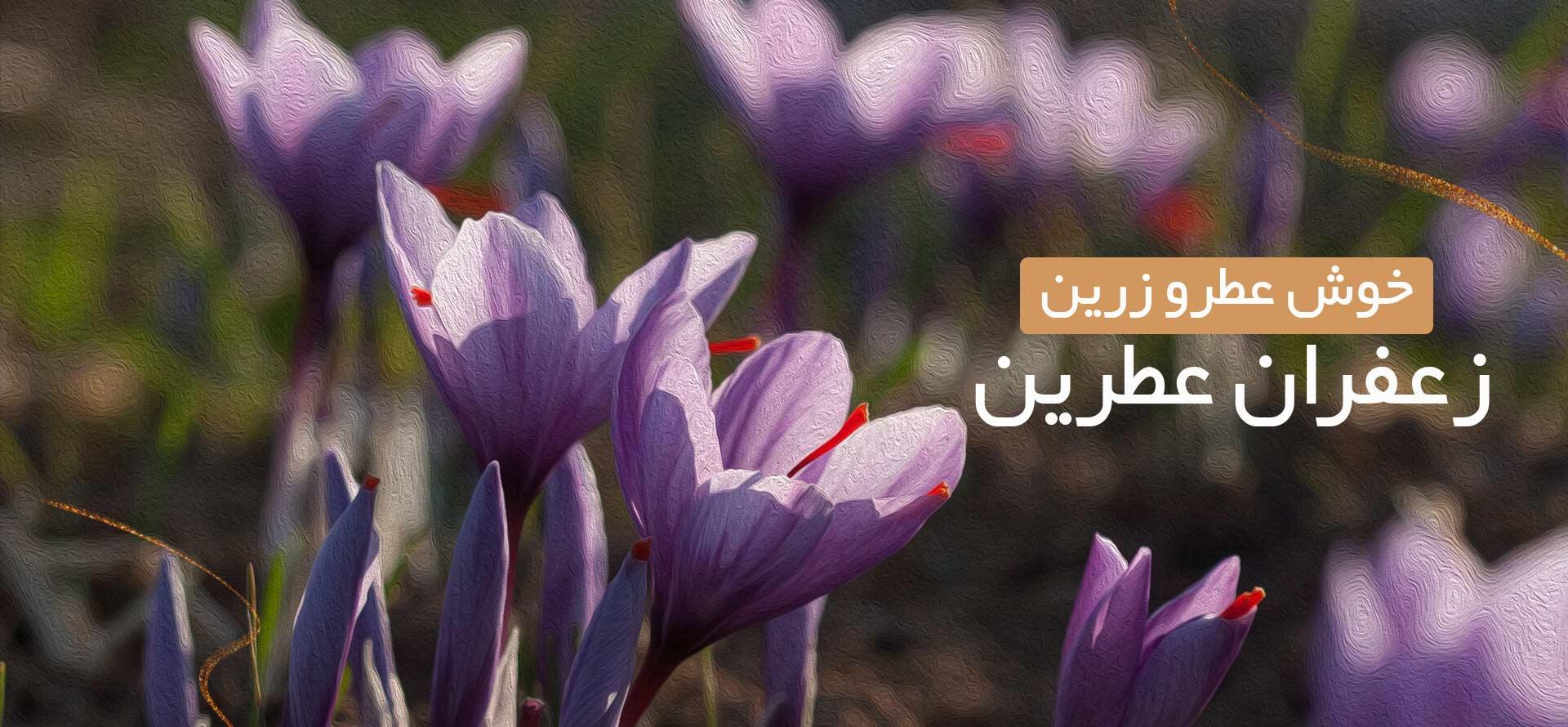 خرید زعفران: فروشگاه اینترنتی زعفران عطرین